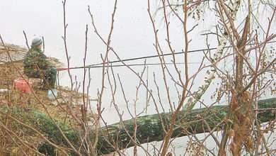 Ловля плотвы накануне зимы