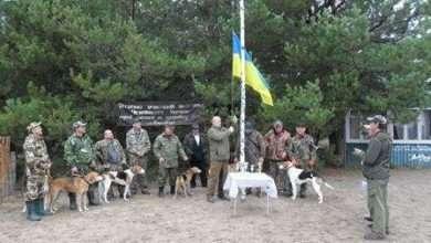 Соревнования и испытания гончих собак по пушному зверю