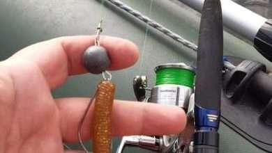 Как лучше ловить судака - поводок или шнур?