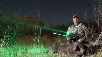 Ночная охота: особенности